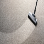 Home Carpet Cleaning Specialists in Down 8